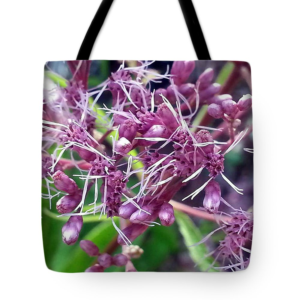 Good Morning Tote Bag featuring the photograph Good Morning by Jessica Tolemy