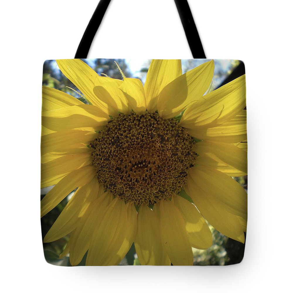 Sunshine Tote Bag featuring the photograph Good Morning Sunshine by Gerry High