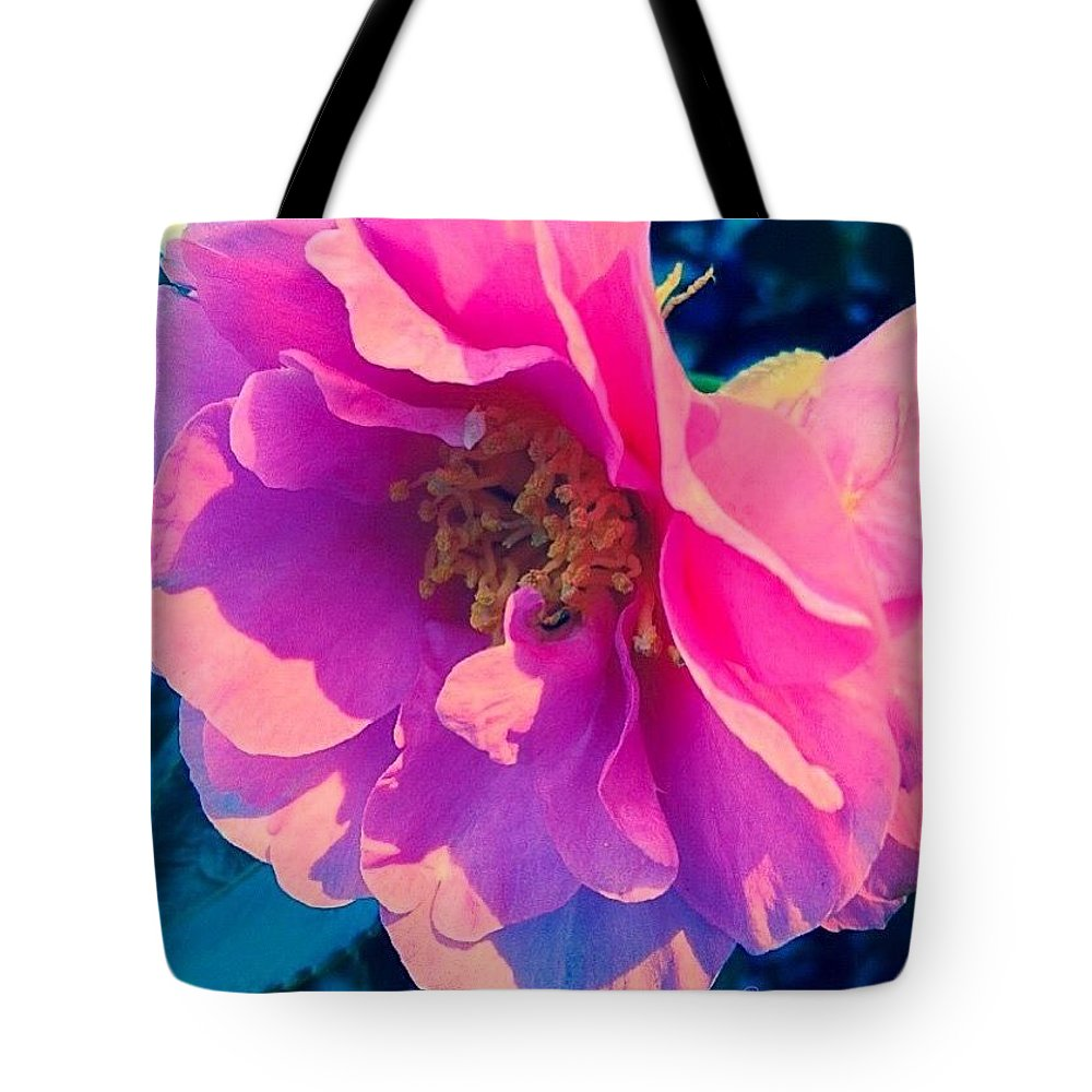 Goodnight Pink Camellia Tote Bag featuring the photograph Goodnight Pink Camellia by Anna Porter