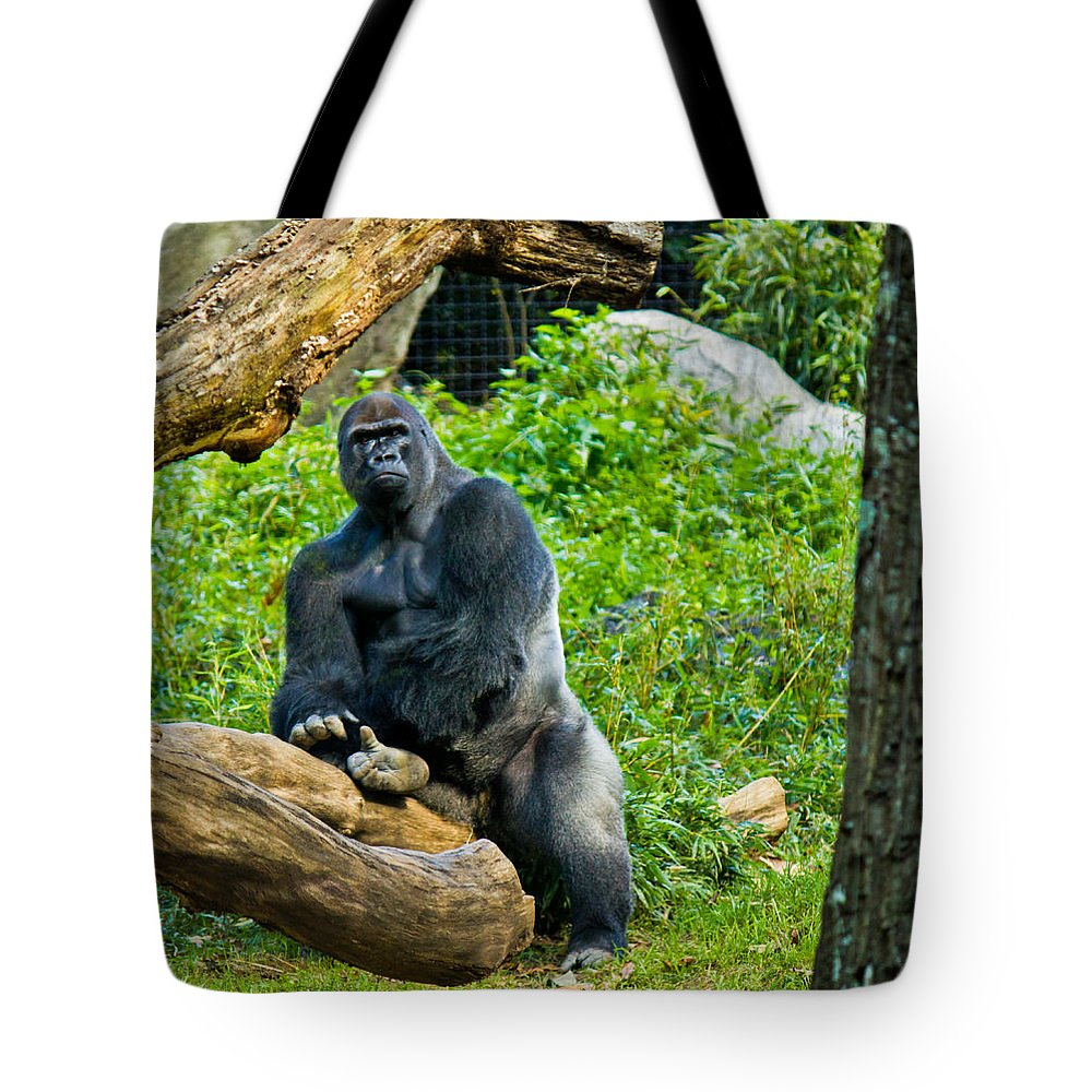 Silverback Tote Bag featuring the photograph Gorilla by Jonny D