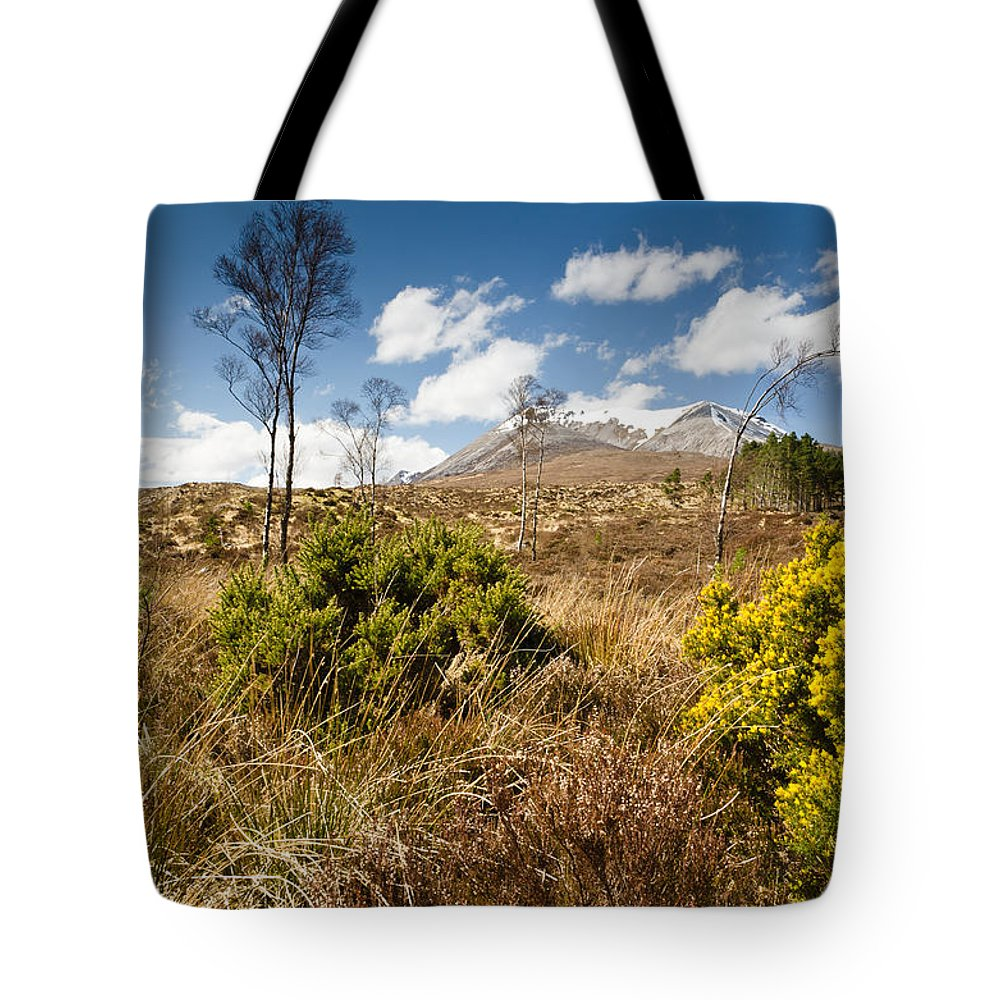 Beinn Eighe Tote Bag featuring the photograph Gorse Bush On Mountain Approach by David Head