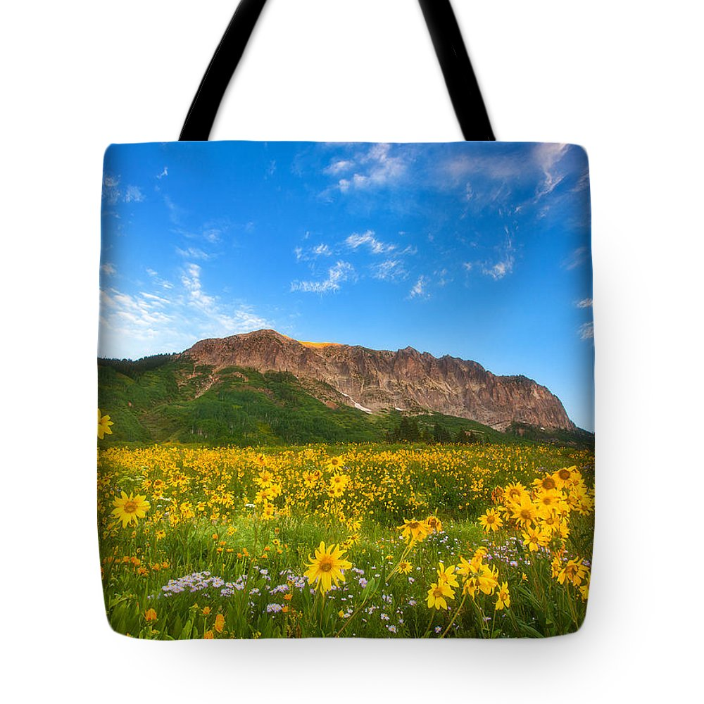 Colorado Landscapes Tote Bag featuring the photograph Gothic Meadow by Darren White