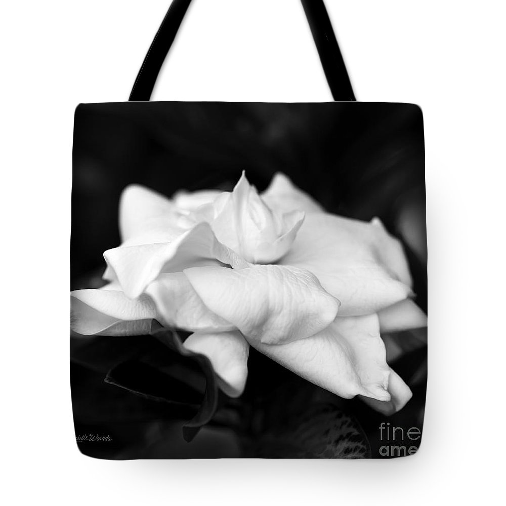 Graceful Soft And Sweet Tote Bag featuring the photograph Graceful Soft And Sweet by Michelle Constantine