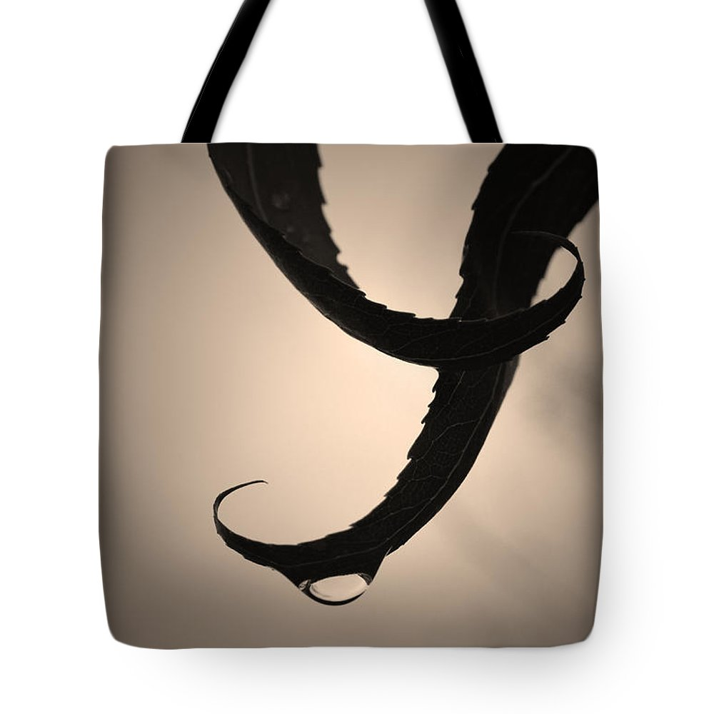 Leaf Tote Bag featuring the photograph Gracefully by Tara Turner