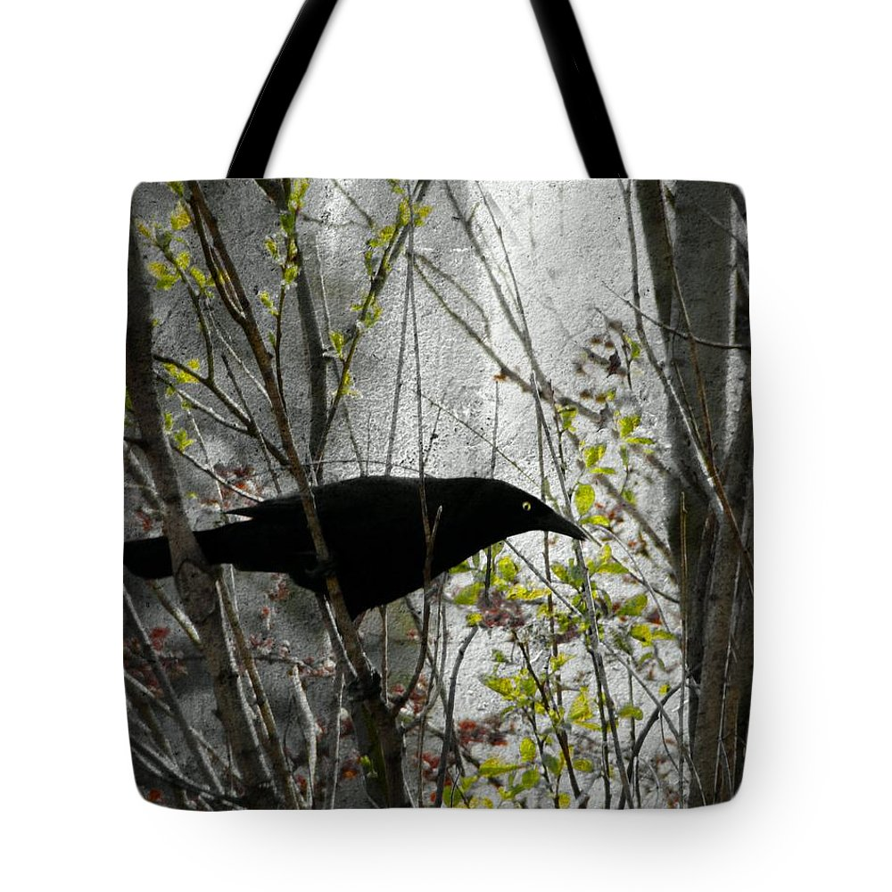 Grackle Image Tote Bag featuring the photograph Grackle Bush by Gothicrow Images