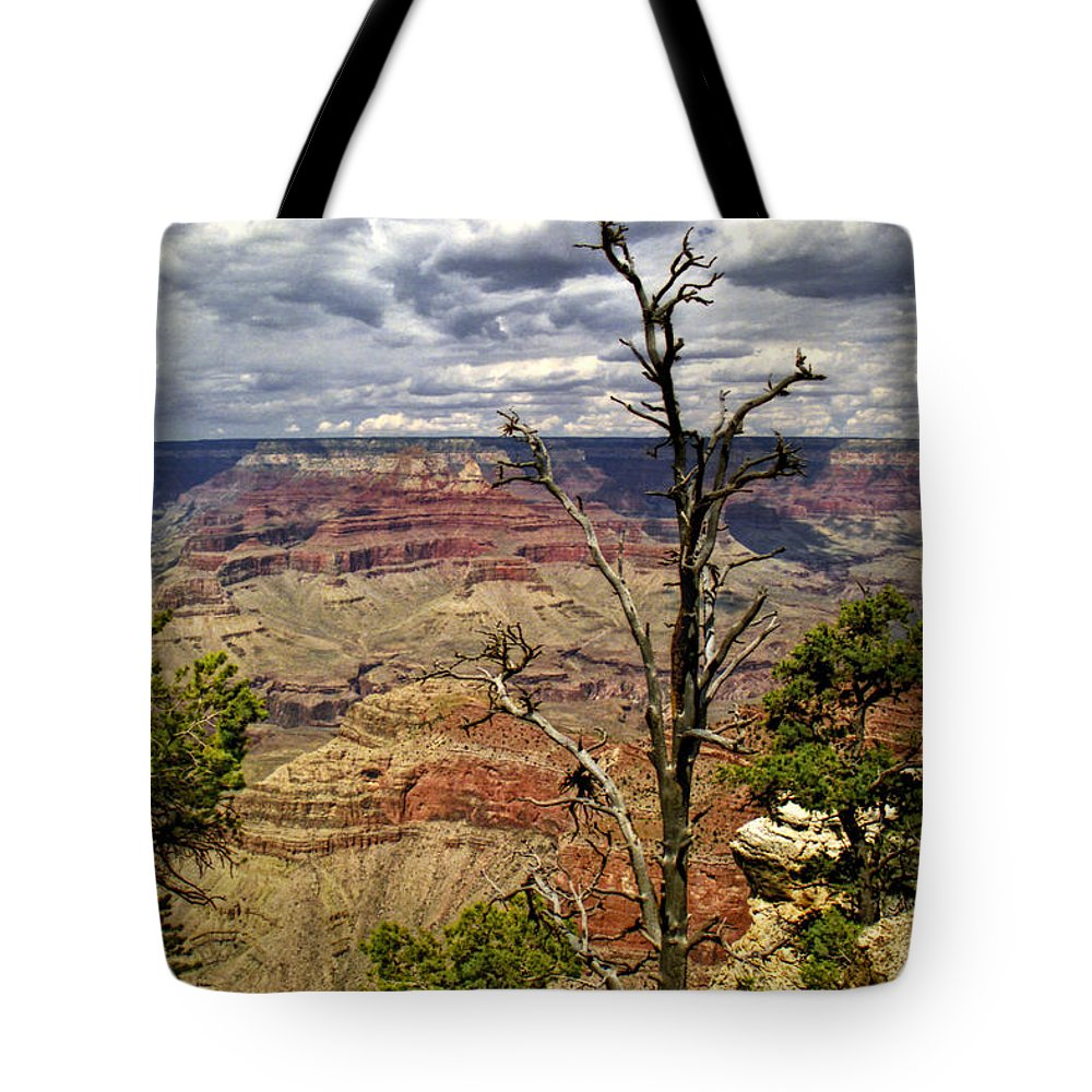 Art Tote Bag featuring the photograph Grand Canyon View From The South Rim by Randall Nyhof
