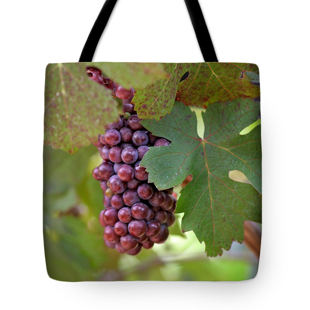Grape Tote Bag featuring the photograph Grape Bunch by Art Block Collections