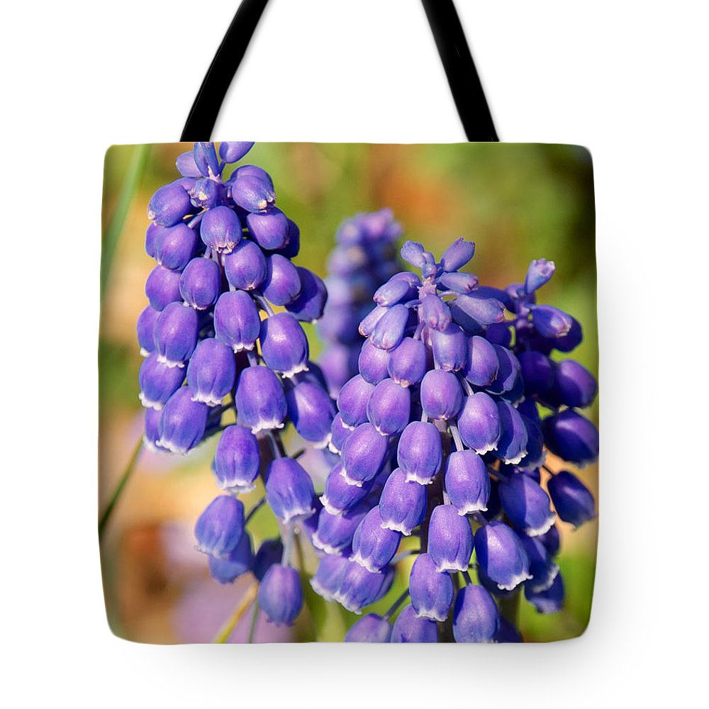 Flowers Tote Bag featuring the photograph Grape Hyacinth by Mark Dodd