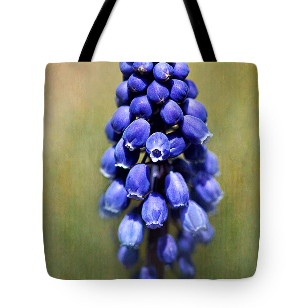 Muscari Tote Bag featuring the photograph Grape Hyacinth by Nikolyn McDonald