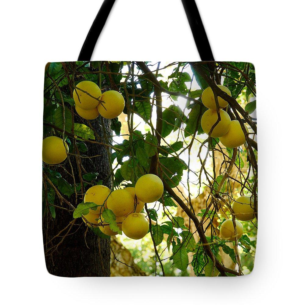 Atlantic Ocean Tote Bag featuring the photograph Grapefruits by Jouko Lehto