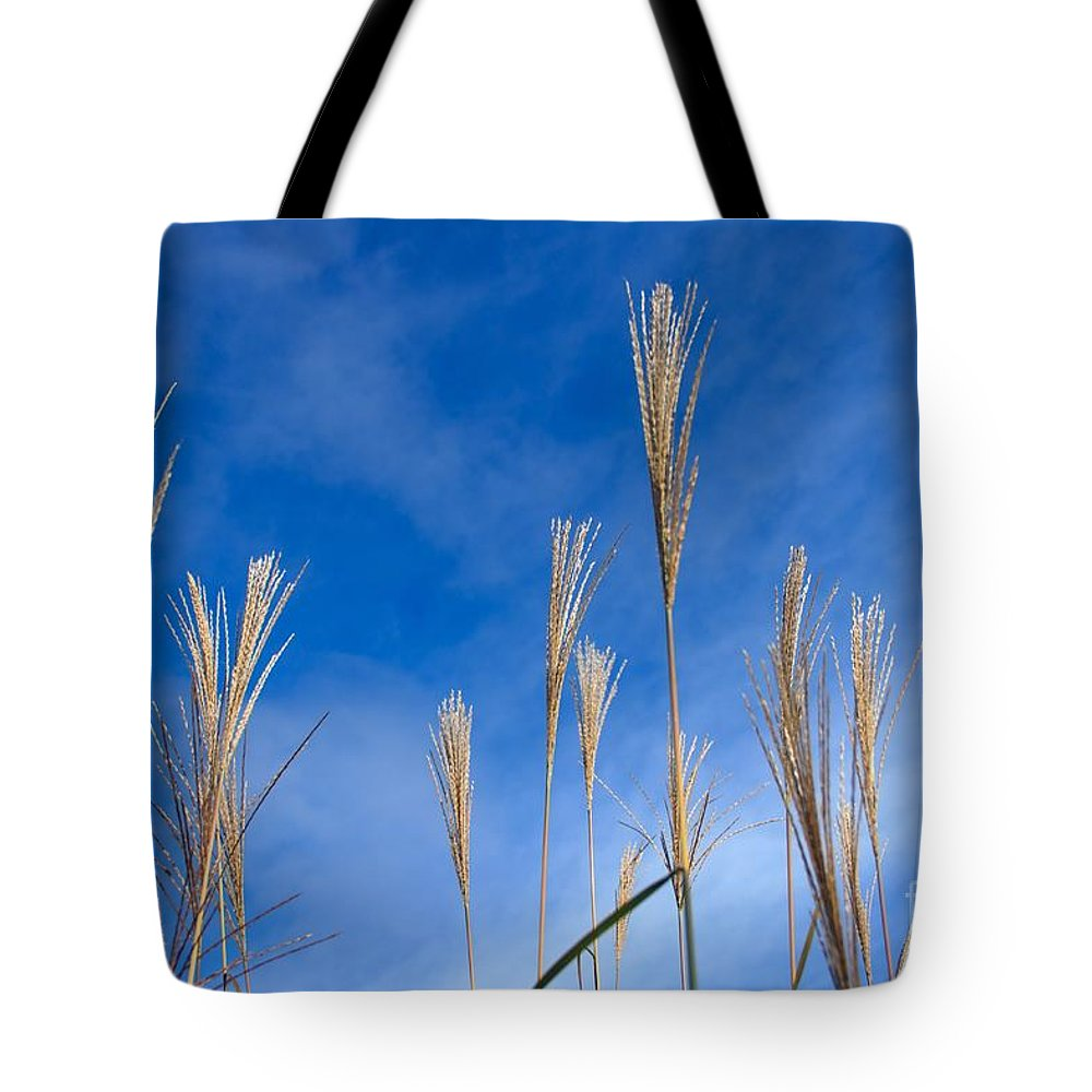 Sky Tote Bag featuring the photograph Grass Against A Blue Sky by Lucy Raos