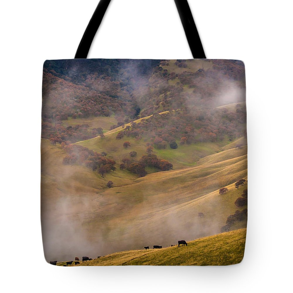 Landscape Tote Bag featuring the photograph Grazing Above The Fog by Marc Crumpler