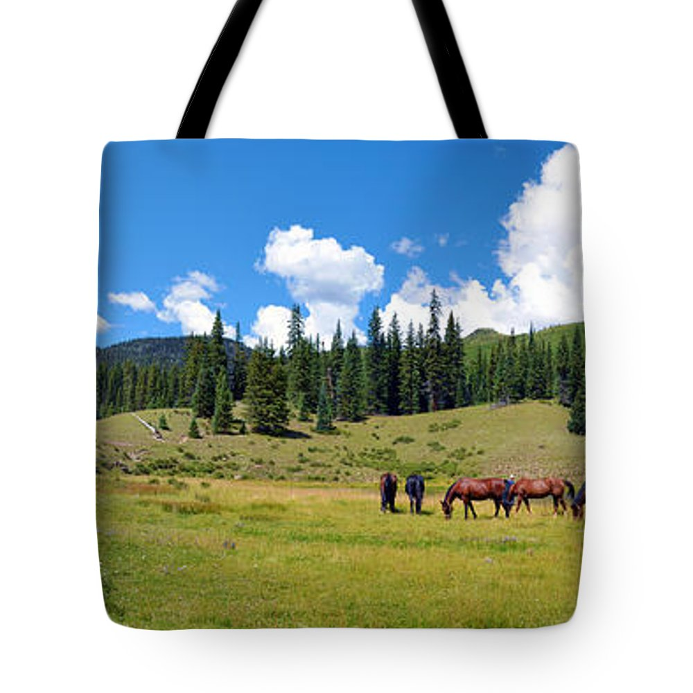 Grazing Tote Bag featuring the photograph Grazing by Gary Mosman