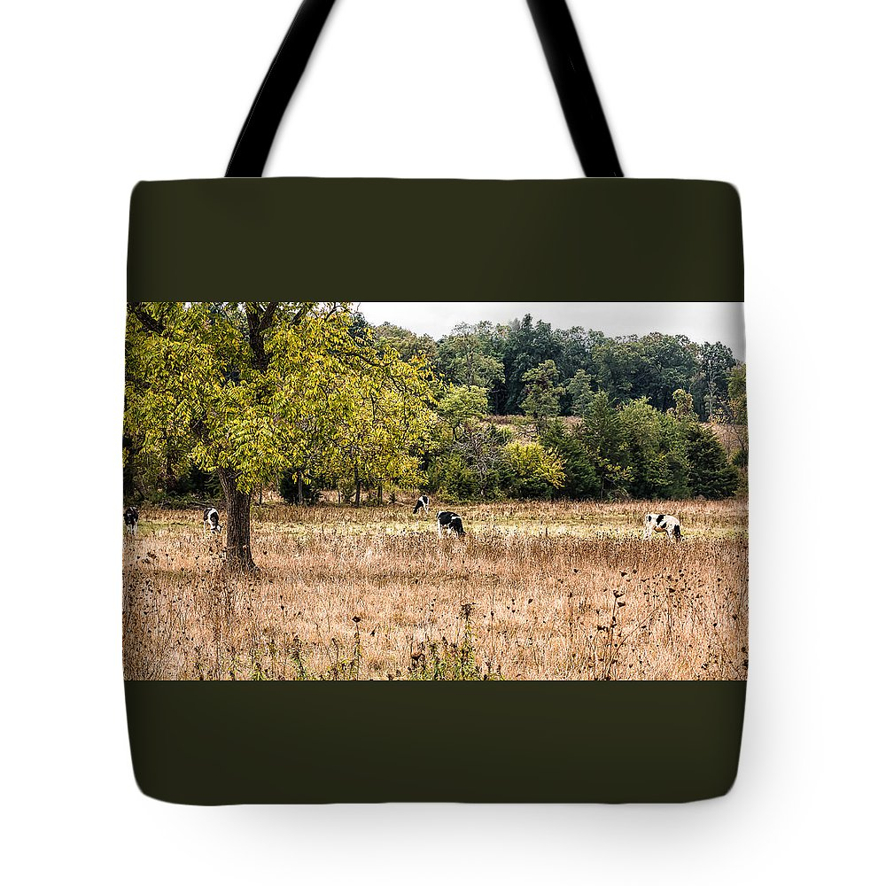 Autumn Tote Bag featuring the photograph Grazing by Tami Stieger