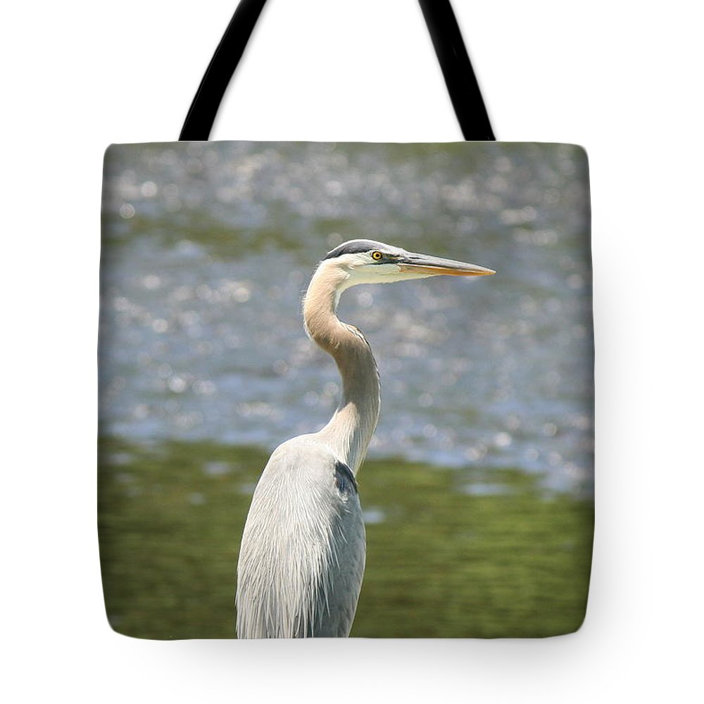 Heron Tote Bag featuring the photograph Great Blue Heron In Light by Neal Eslinger