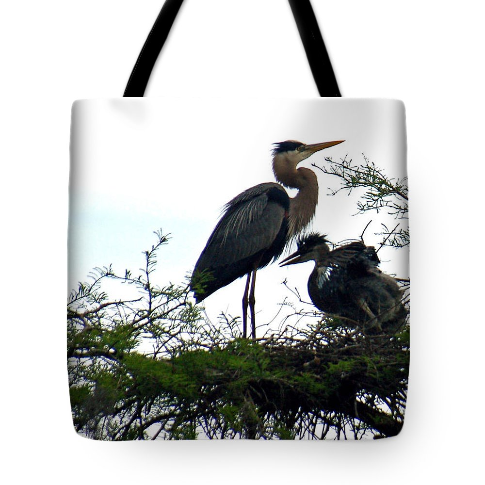 Blue Heron Tote Bag featuring the photograph Great Blue Heron With Fledglings II by Suzanne Gaff
