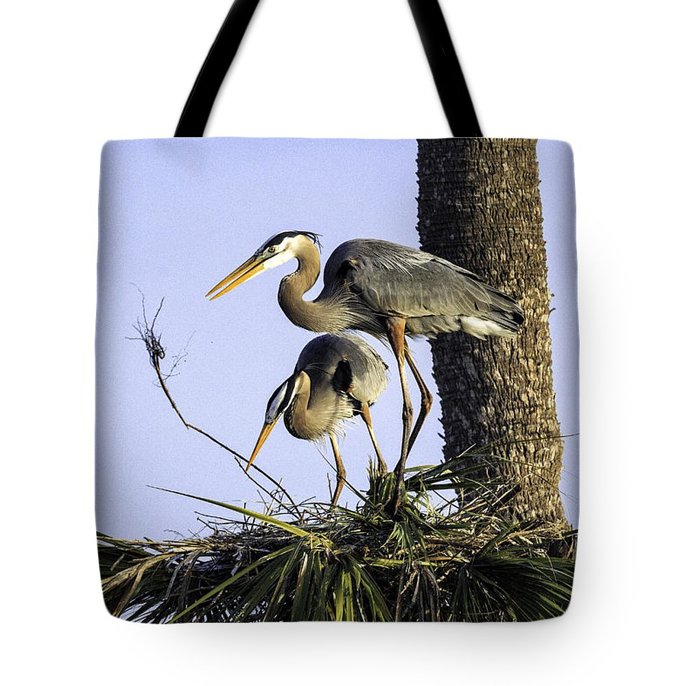 Birds Tote Bag featuring the photograph Great Blue Herons Nesting by Fran Gallogly