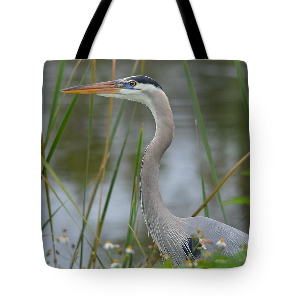 Great Blue Heron Tote Bag featuring the photograph Great Blue In The Reeds by Patricia Twardzik