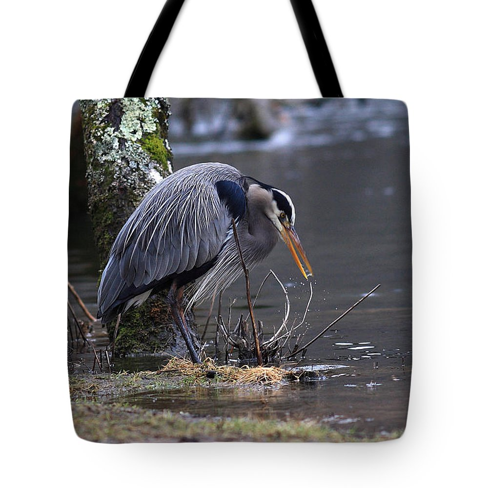 Tote Bag featuring the photograph Great Blue On The Clinch River II by Douglas Stucky