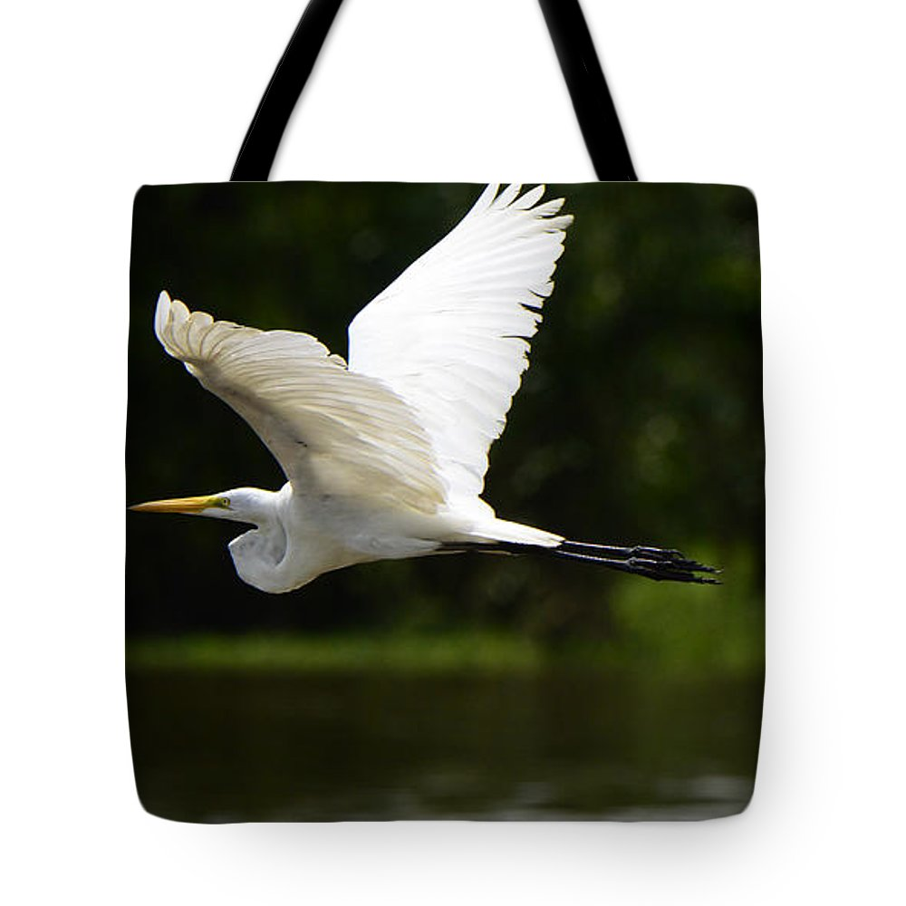 Great Egret Tote Bag featuring the photograph Great Egret Amazon River by Bob Christopher