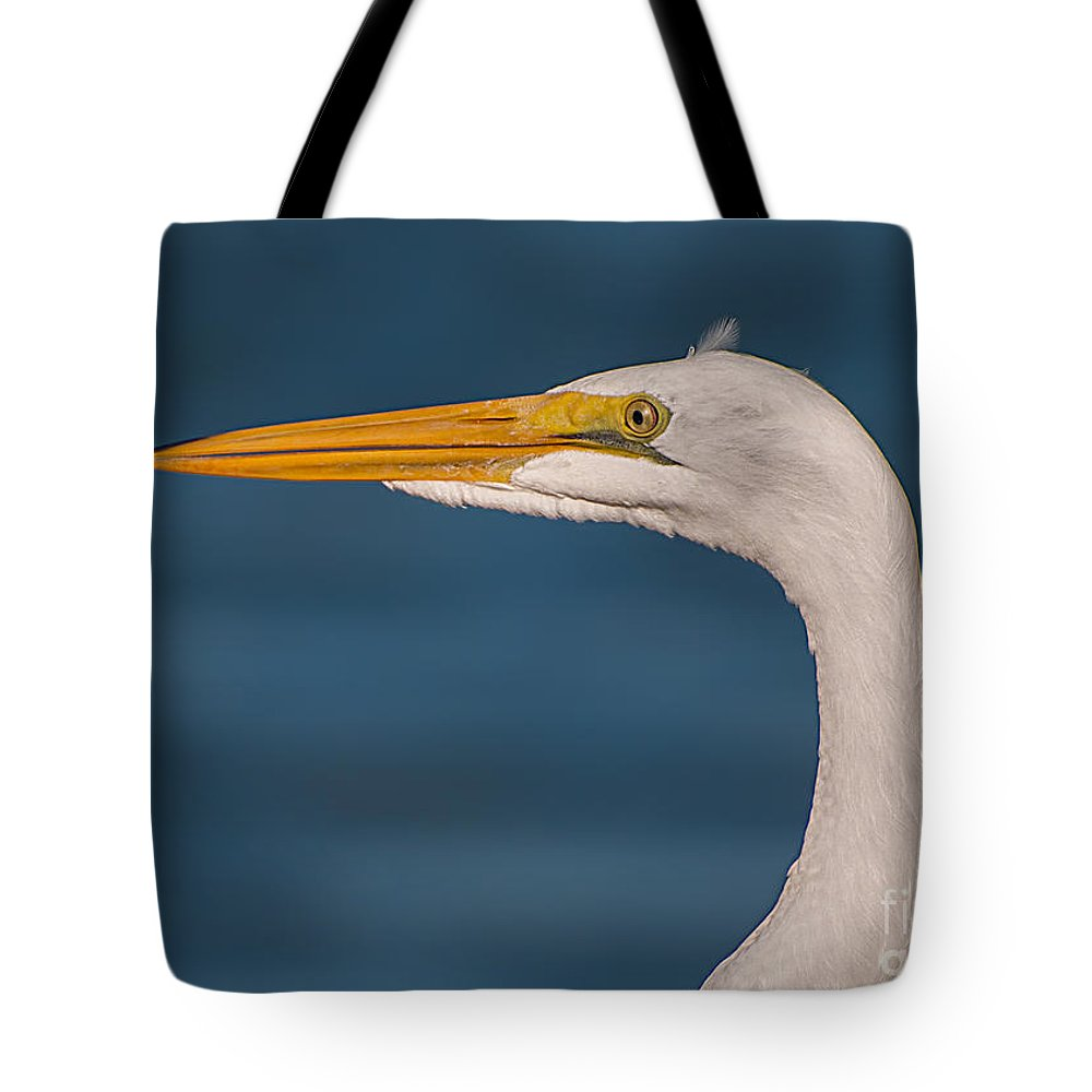 Great Tote Bag featuring the photograph Great Egret Portrait by Photos By Cassandra