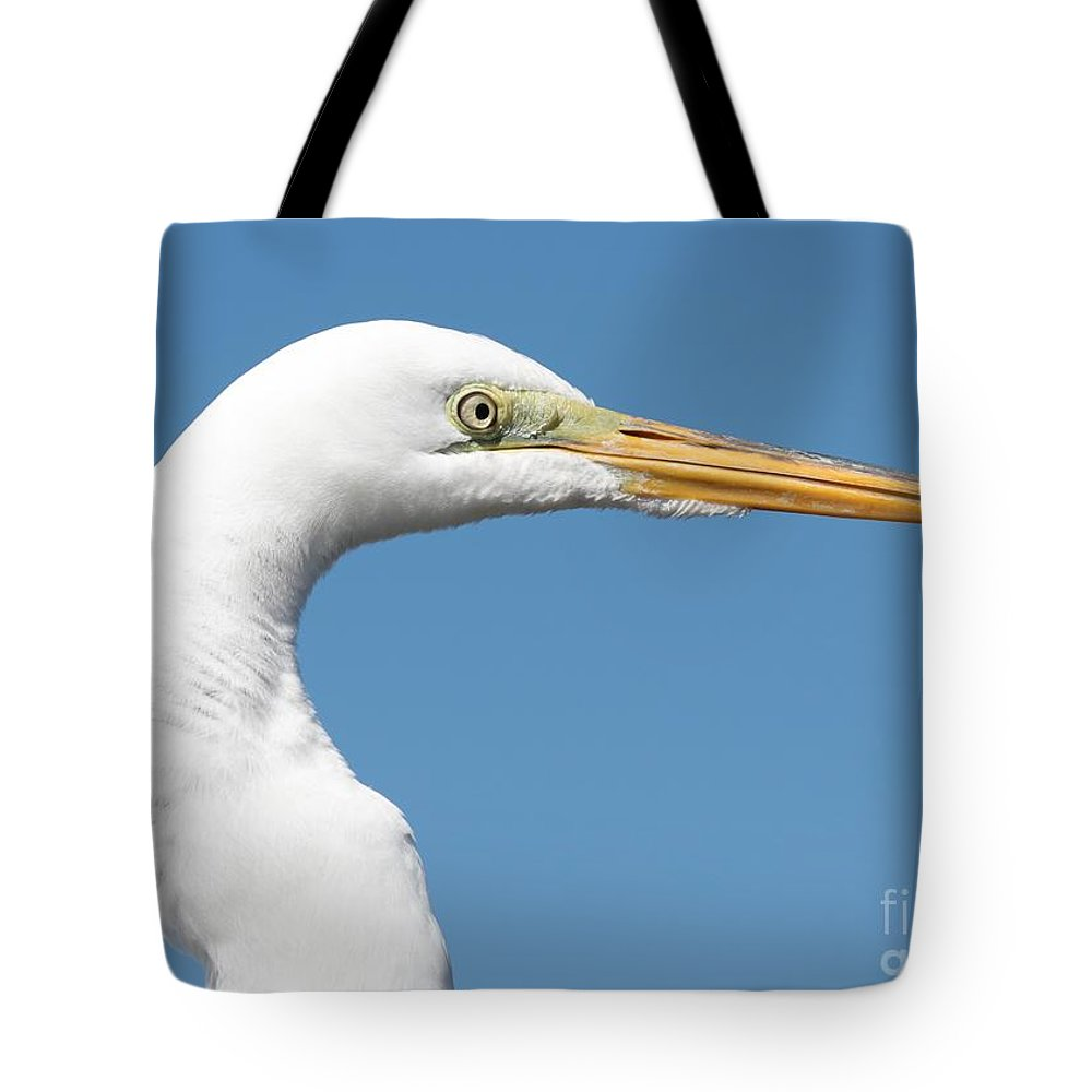 Egret Tote Bag featuring the photograph Great Egret Profile Against Blue Sky by Carol Groenen
