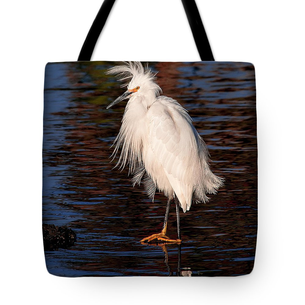 Great Egret Bird Photographs Tote Bag featuring the photograph Great Egret Walking On Water by Jerry Cowart