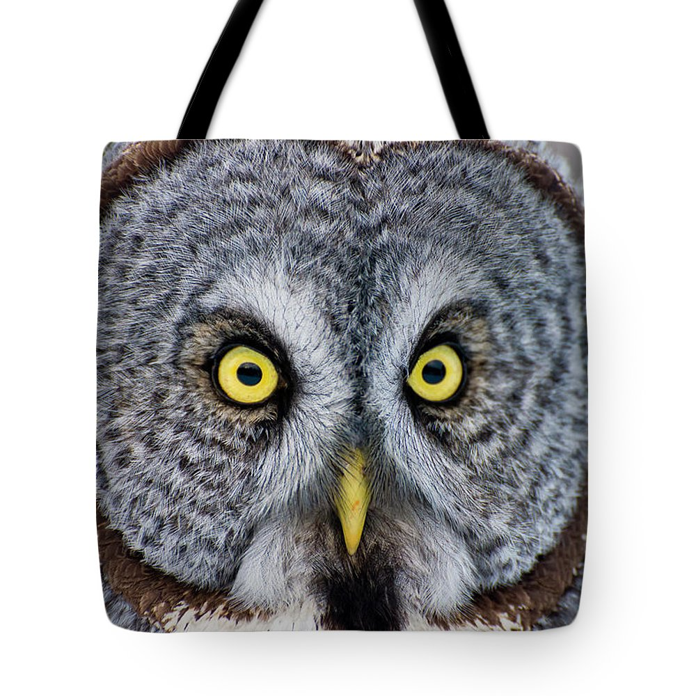 Animal Themes Tote Bag featuring the photograph Great Gray Owl by Copyright Michael Cummings