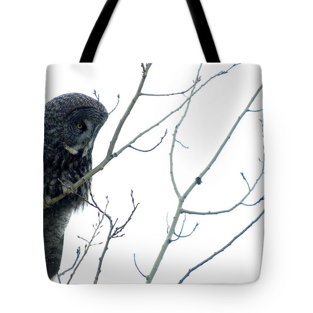 Owl Tote Bag featuring the photograph Great Grey Owl On Watch by Bob Christopher