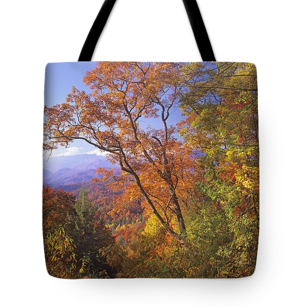Autumn Tote Bag featuring the photograph Great Smoky Mts From Blue Ridge Pkwy by Tim Fitzharris