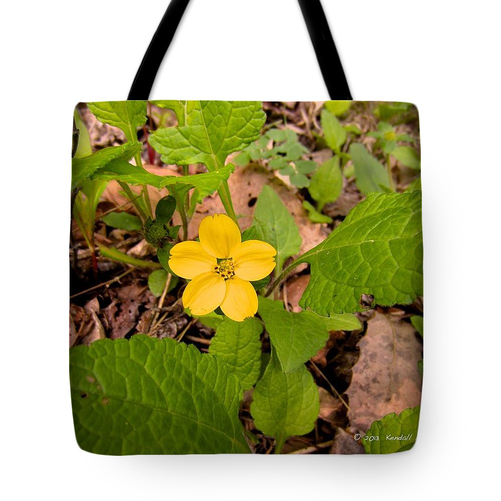 Green And Gold Tote Bag featuring the photograph Green And Gold by Kendall Kessler