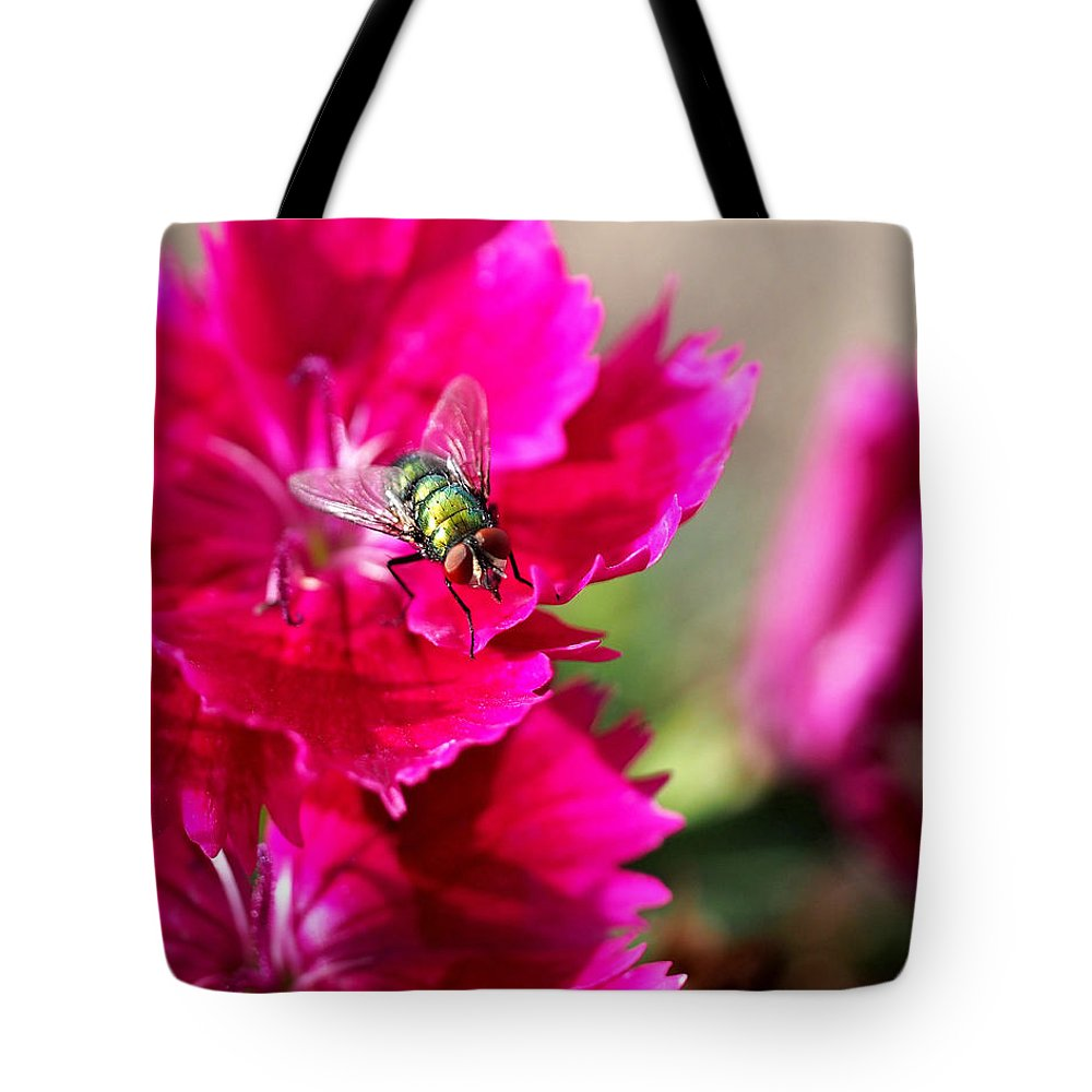 Flies Tote Bag featuring the photograph Green Bottle Fly On Dianthus by Rona Black