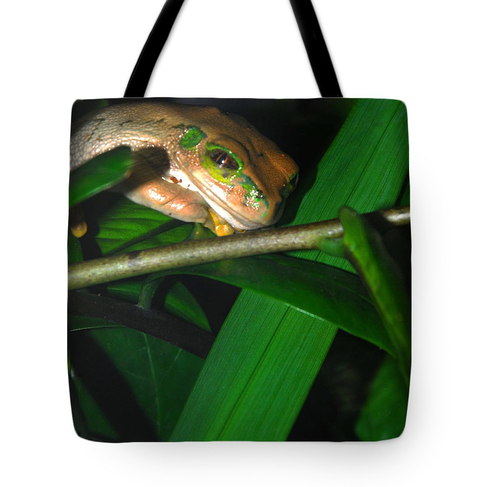 Tote Bag featuring the photograph Green Eye'd Frog by Optical Playground By MP Ray