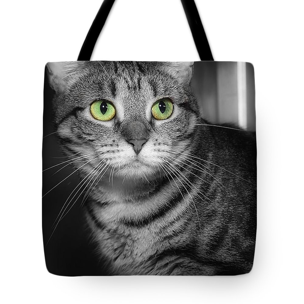 Green Eyes Tote Bag featuring the photograph Green Eyes by Joyce Baldassarre