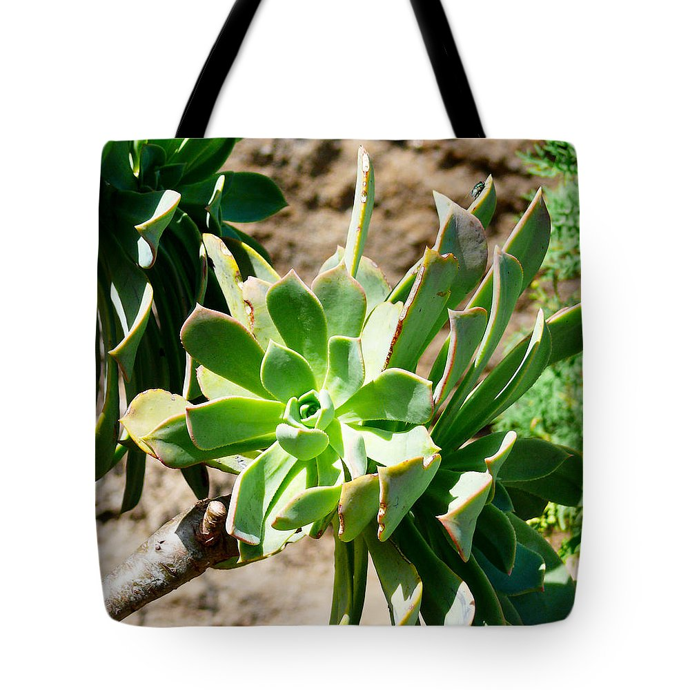 Las Palmas Tote Bag featuring the photograph Green Flower by Tracy Winter