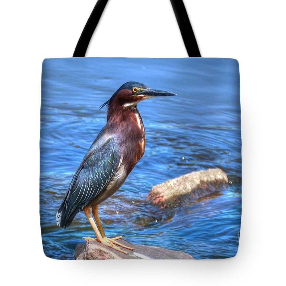 Green Heron Tote Bag featuring the photograph Green Heron by M Dale
