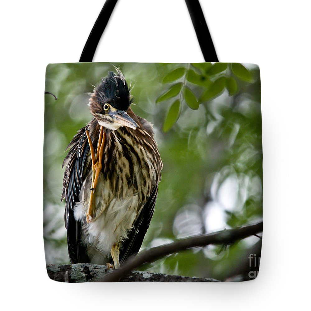Green Heron Tote Bag featuring the photograph Green Heron Waves Hello by Cheryl Baxter