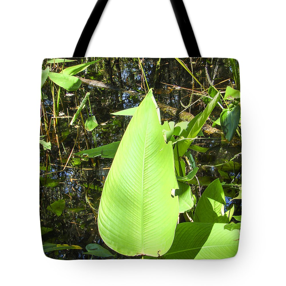Corkscrew Tote Bag featuring the photograph Green Leaf by Nancy L Marshall