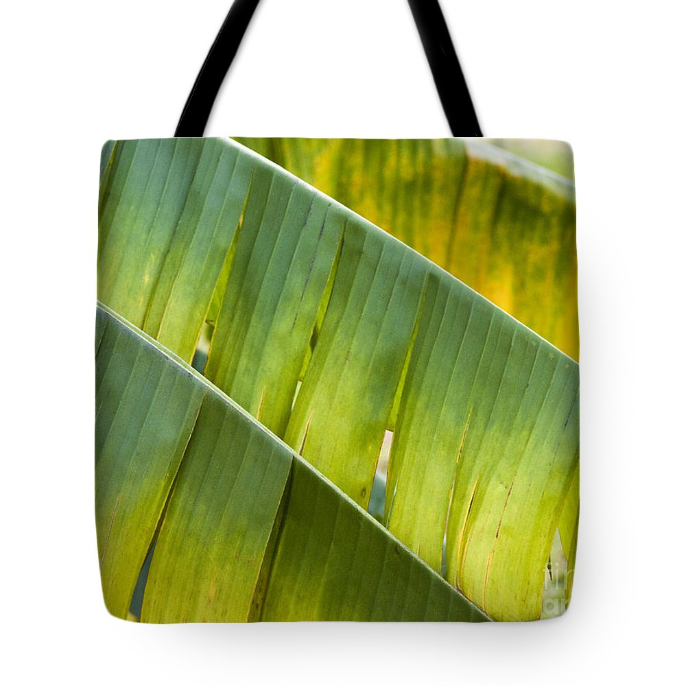 Heiko Tote Bag featuring the photograph Green Leaves Series 14 by Heiko Koehrer-Wagner