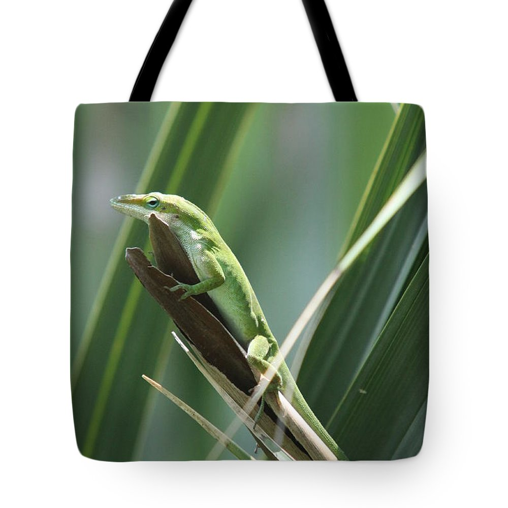 Lizard Tote Bag featuring the photograph Green Lizard by Christiane Schulze Art And Photography