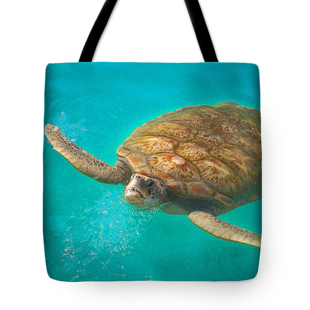 Sea Turtle Tote Bag featuring the photograph Green Sea Turtle Surfacing by Marie Hicks