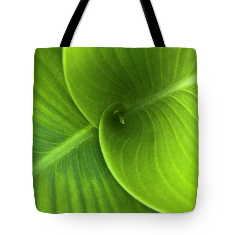 Heiko Tote Bag featuring the photograph Green Twin Leaves by Heiko Koehrer-Wagner