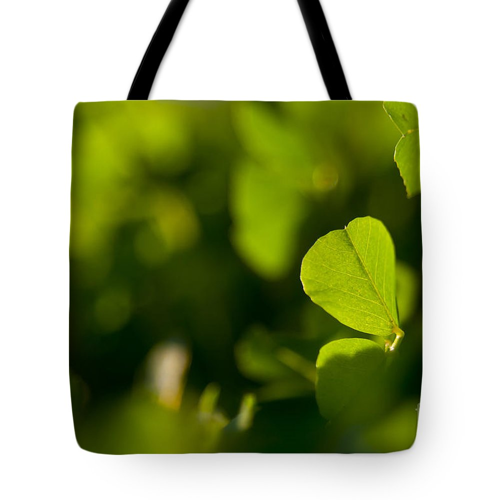 Landscape Tote Bag featuring the photograph Greenery by Tim Hester