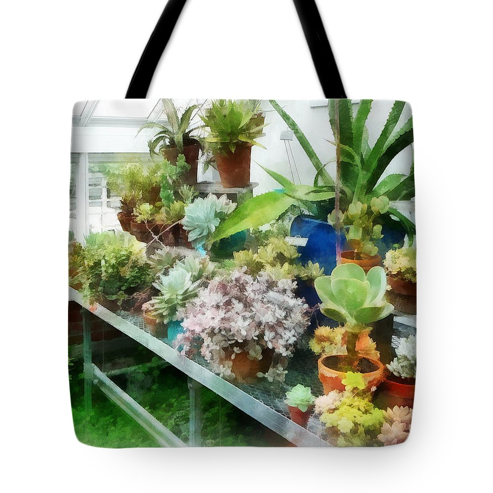 Cactus Tote Bag featuring the photograph Greenhouse With Cactus by Susan Savad