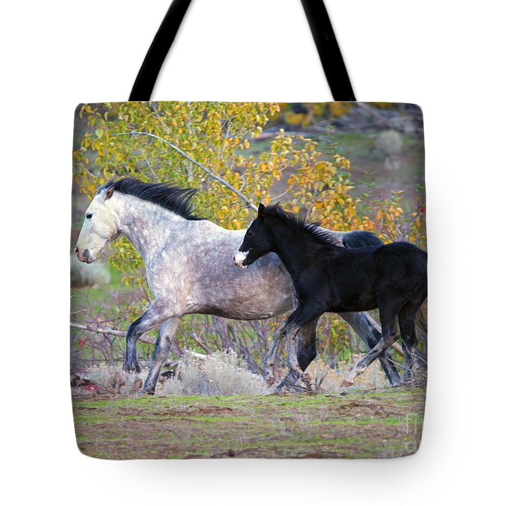 Wild Horses Tote Bag featuring the photograph Grey And White by Mike Dawson