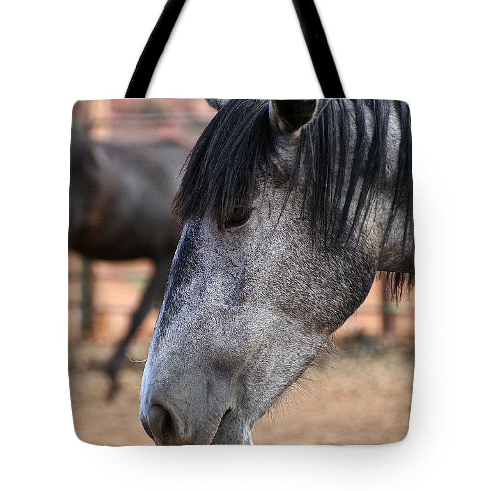 Mare Tote Bag featuring the photograph Grey Mare by Susan Herber