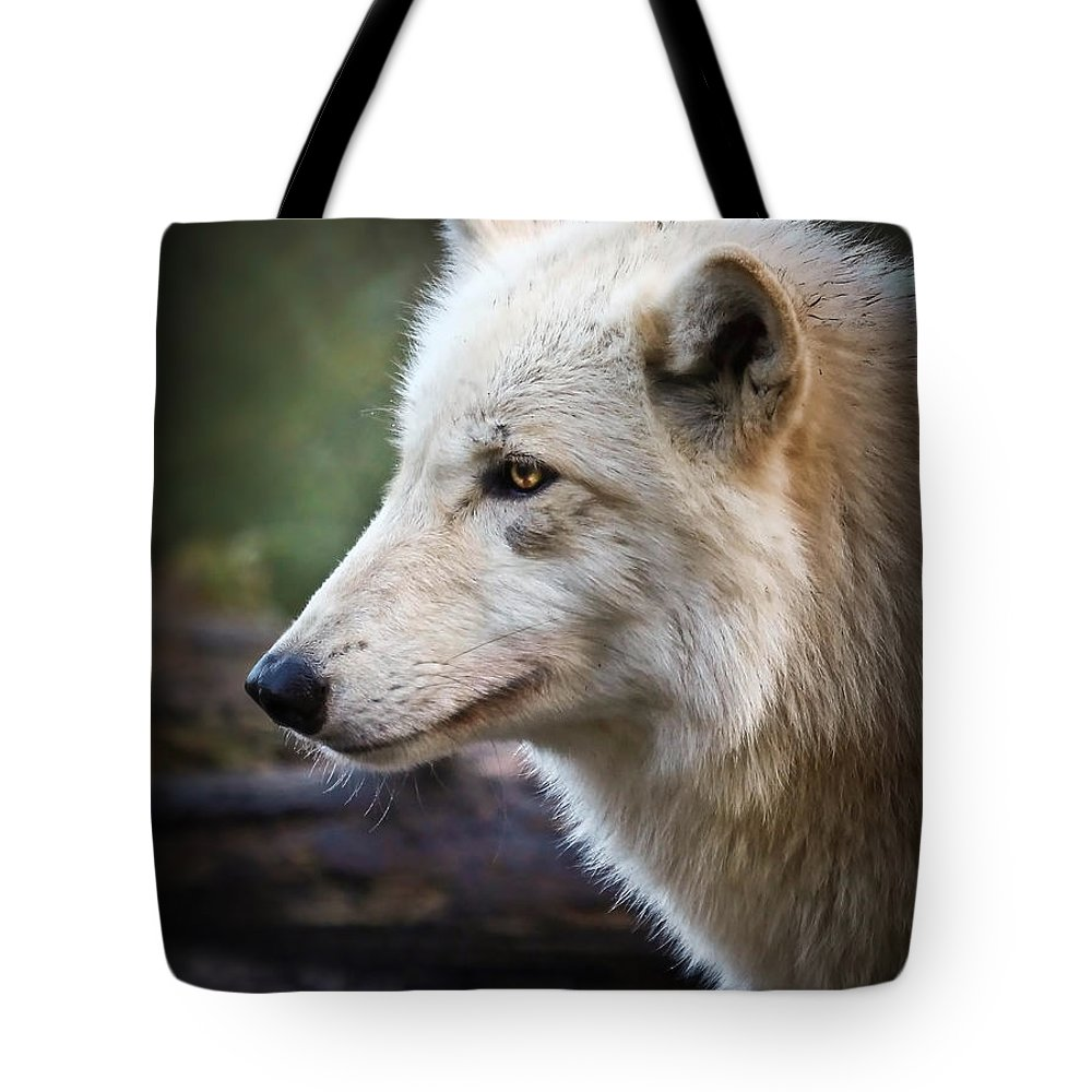 Wolves Tote Bag featuring the photograph Grey Wolf by Athena Mckinzie