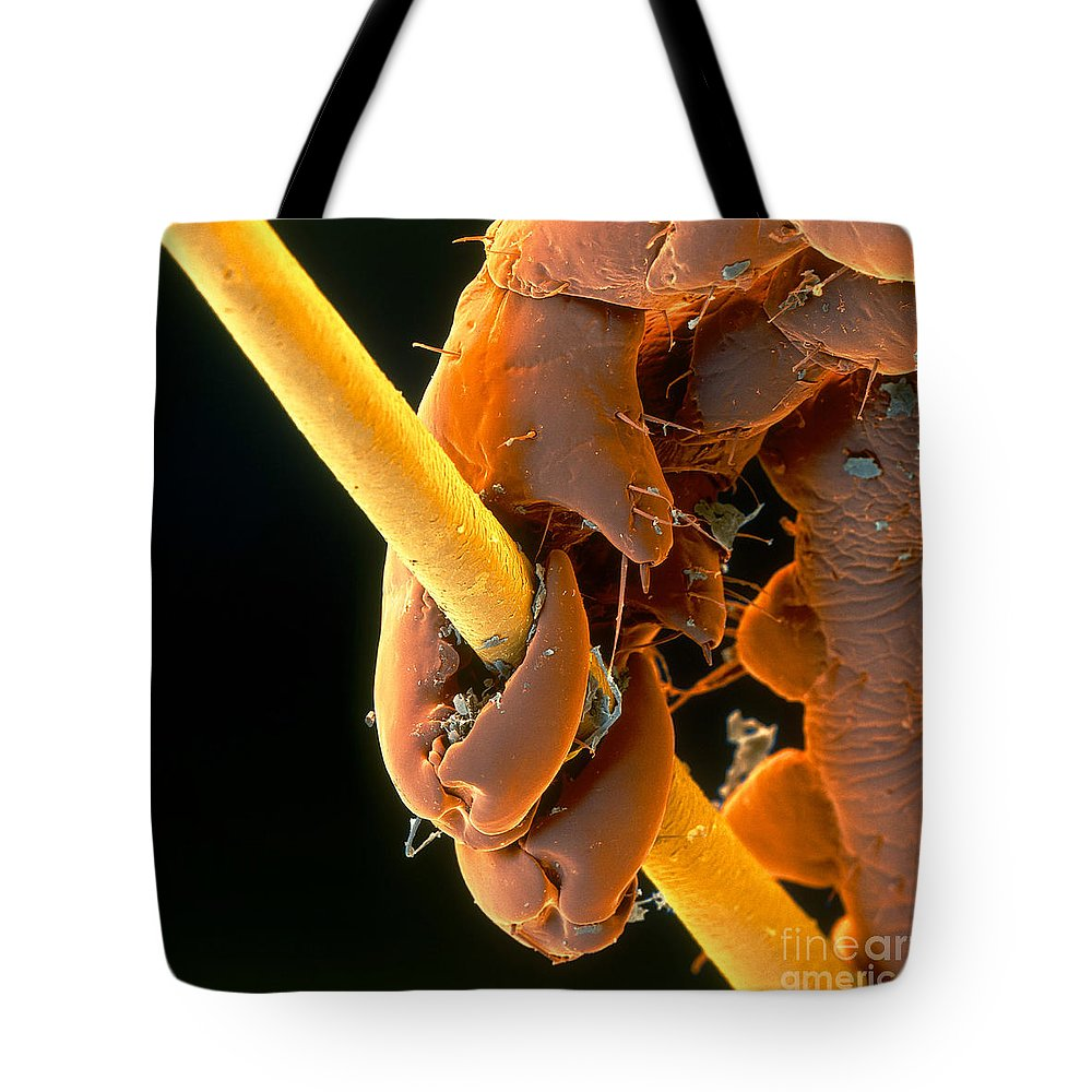 Louse Tote Bag featuring the photograph Grip by Eye of Science