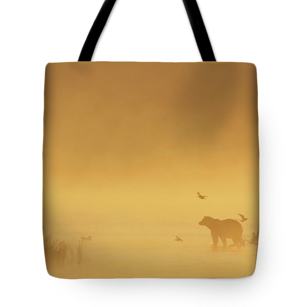 Alaska Tote Bag featuring the photograph Grizzly Bear In Morning Fog by Matthias Breiter