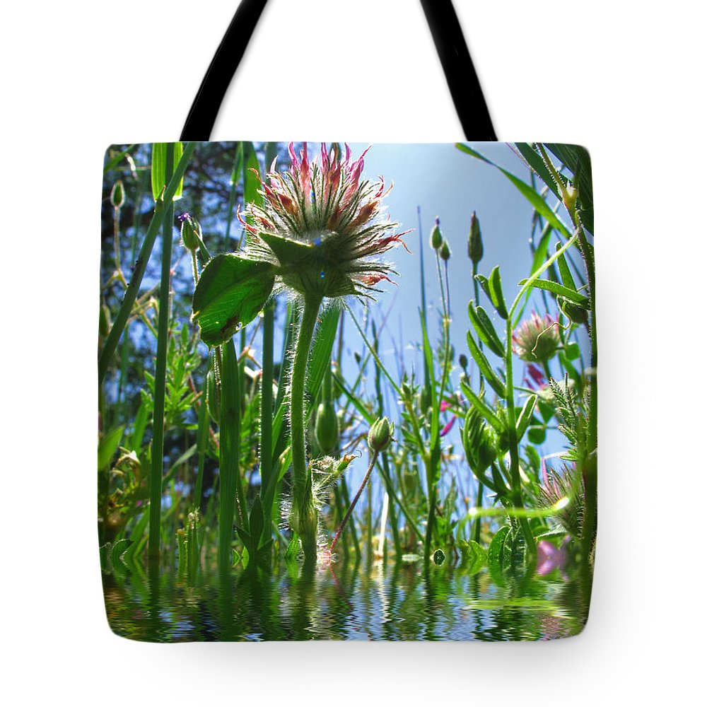 Weeds Tote Bag featuring the photograph Ground Level Flora by Joyce Dickens